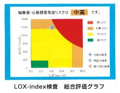 LOX,indexの検査結果 総合評価グラフ